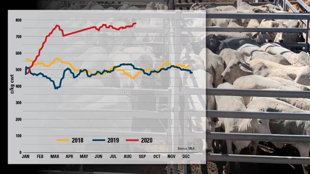 The Eastern Young Cattle Indicator 2020 Graph